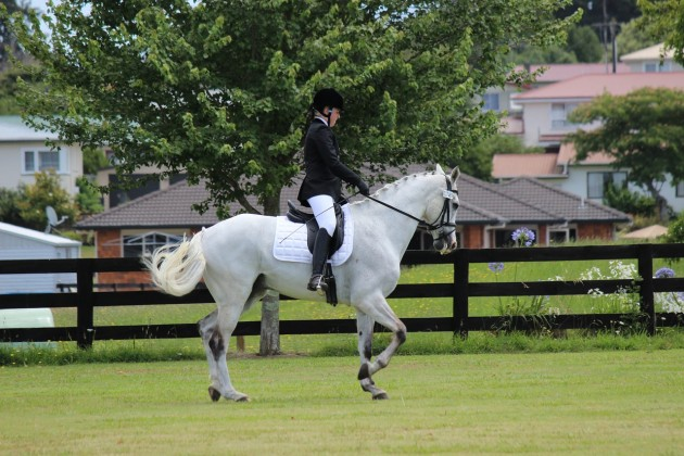 rent a caravan in Rutland Dressage